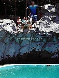東条湖おもちゃ王国 プールアカプルコ 飛び込みプール